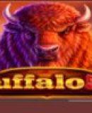 Buffalo 50 online slot Review Endorphina